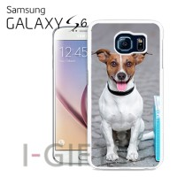 Cover Galaxy S6